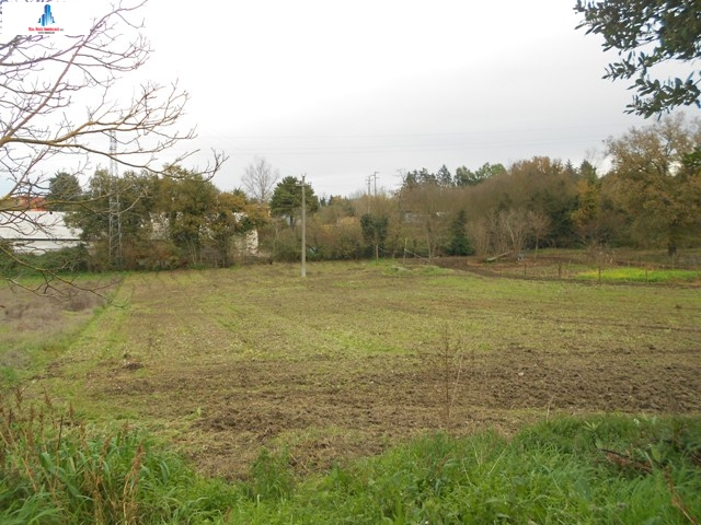 Agriturismo in vendita a Grottaminarda, 9999 locali, Trattative riservate | CambioCasa.it