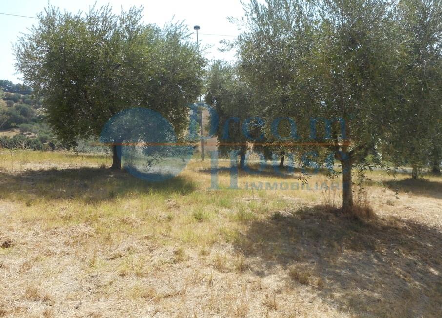 Terreno Edificabile Residenziale in vendita a Colonnella, 9999 locali, zona Località: ZONACOLLINARE, prezzo € 33.000   CambioCasa.it