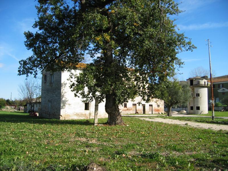 Soluzione Indipendente in vendita a Agugliano, 10 locali, zona Località: Chiusa, prezzo € 500.000 | CambioCasa.it