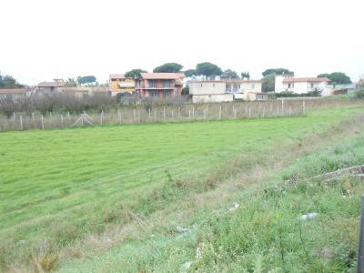 Vai alla scheda: Terreno Agricolo Vendita - Giugliano in Campania (NA) | Varcaturo - Codice ITI 013-AA26553