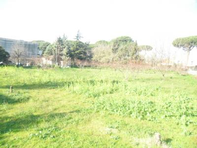Vai alla scheda: Terreno  Residenziale Vendita - Villa Literno (CE) - Codice ITI 013-AA28801