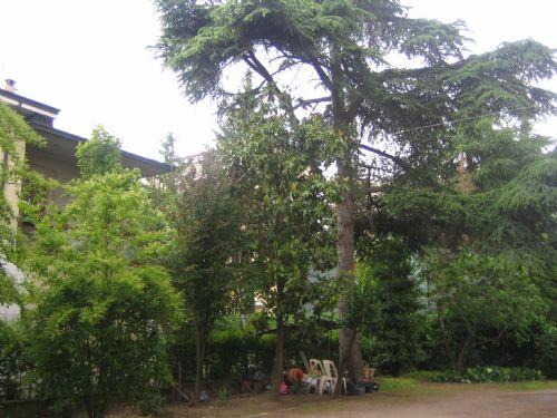 Appartamento in affitto a Carpi, 4 locali, prezzo € 470 | CambioCasa.it