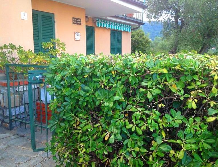 Appartamento in vendita a Diano Arentino, 2 locali, zona Località: DianoBorello, prezzo € 115.000 | CambioCasa.it