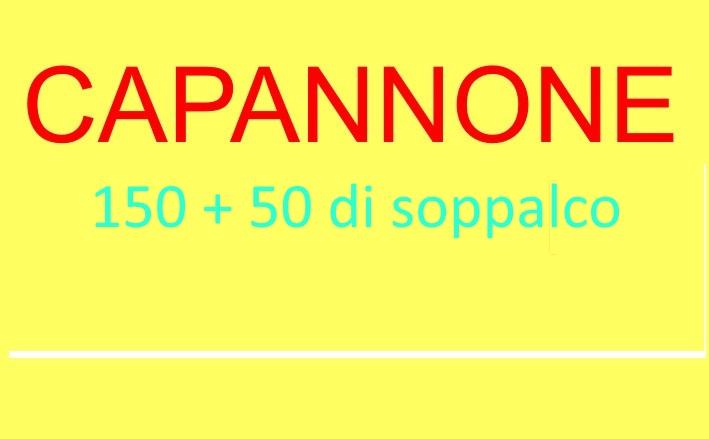 Capannone in vendita a Rosignano Marittimo, 9999 locali, zona Zona: Vada, prezzo € 150.000 | CambioCasa.it