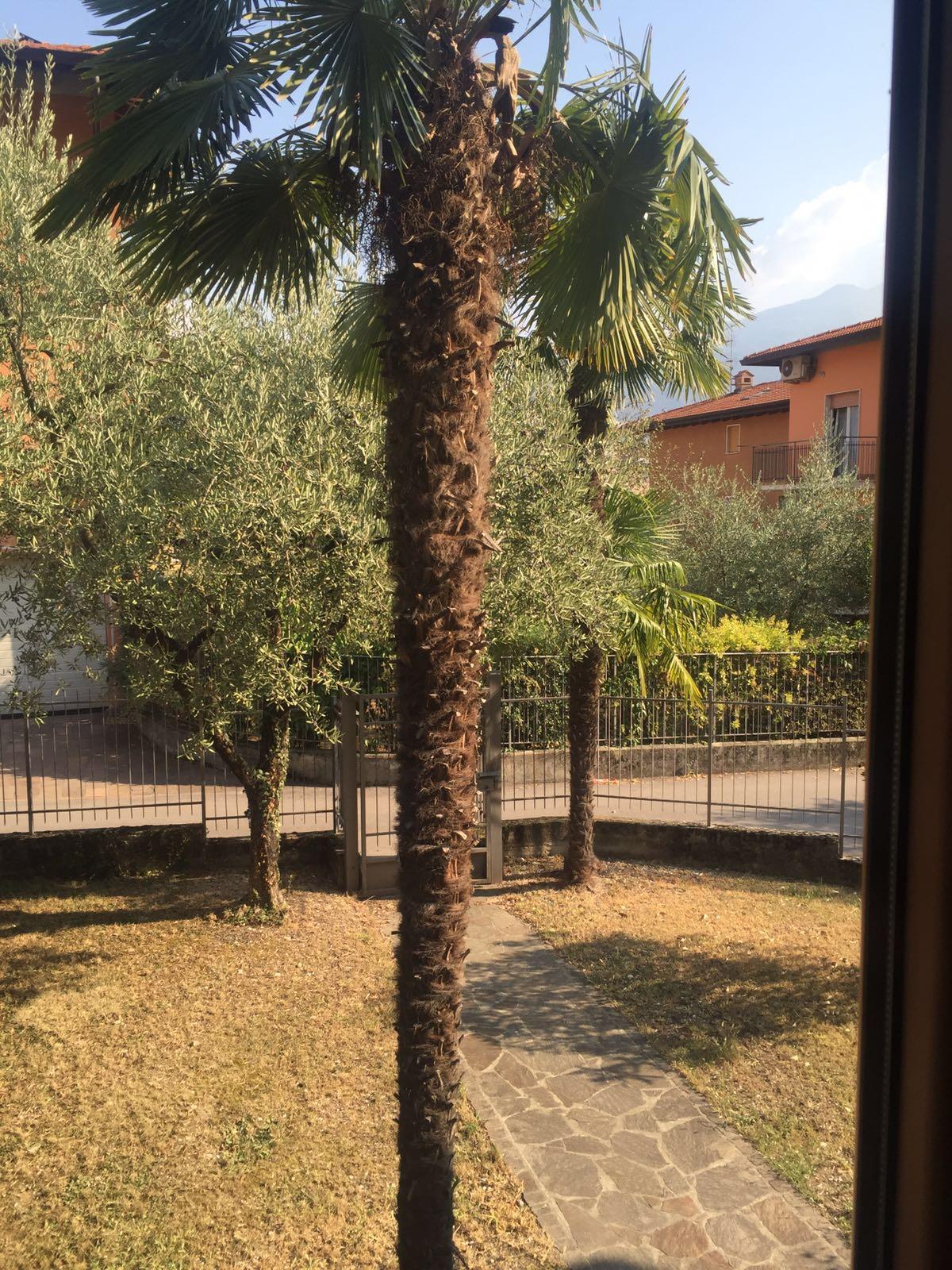 Villa in vendita a Riva del Garda, 4 locali, zona Zona: Riva, prezzo € 490.000 | CambioCasa.it