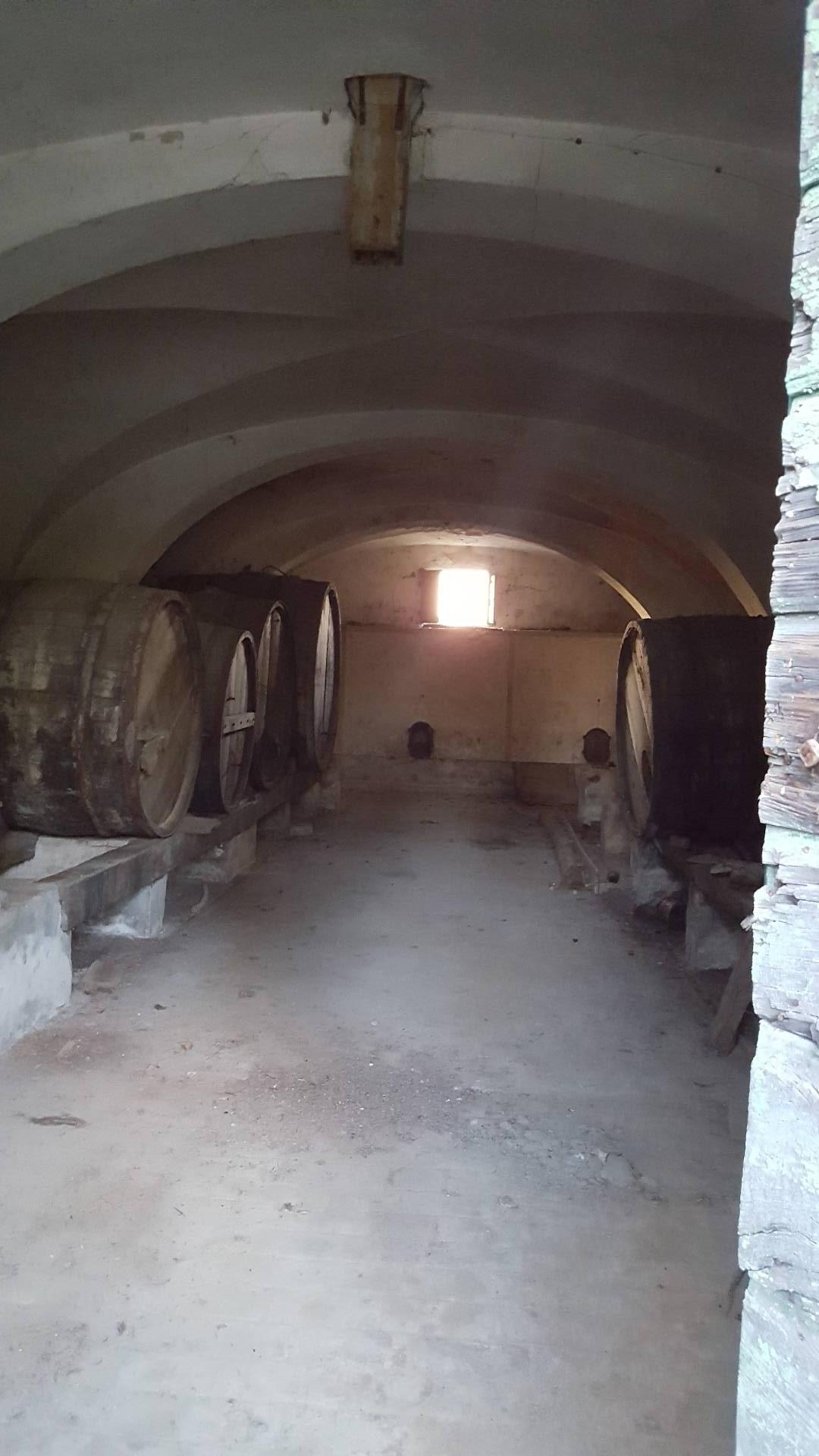 Rustico / Casale in vendita a Santa Maria a Monte, 10 locali, zona Località: SanDonato, prezzo € 200.000 | CambioCasa.it