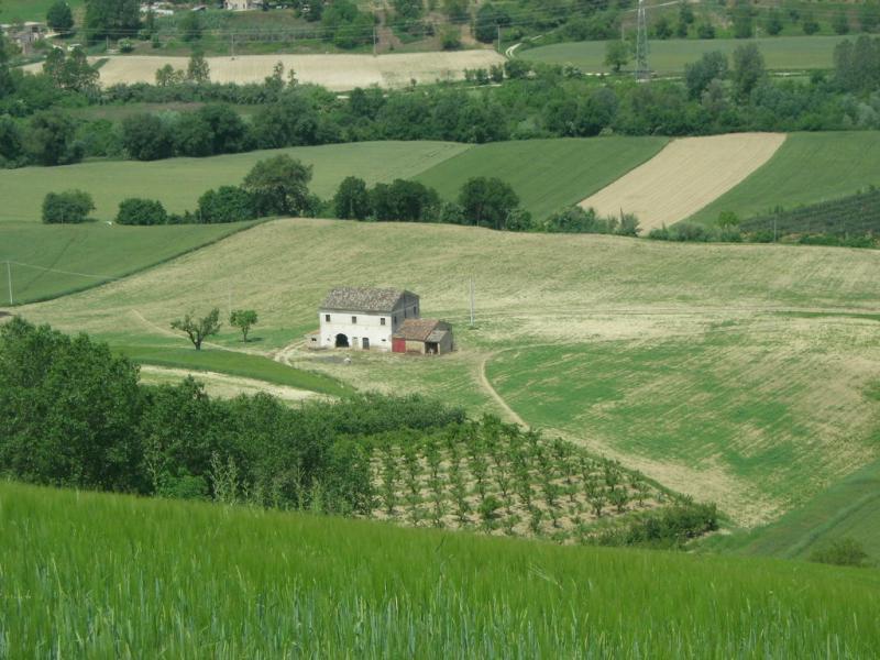 Soluzione Indipendente in Vendita a Belmonte Piceno