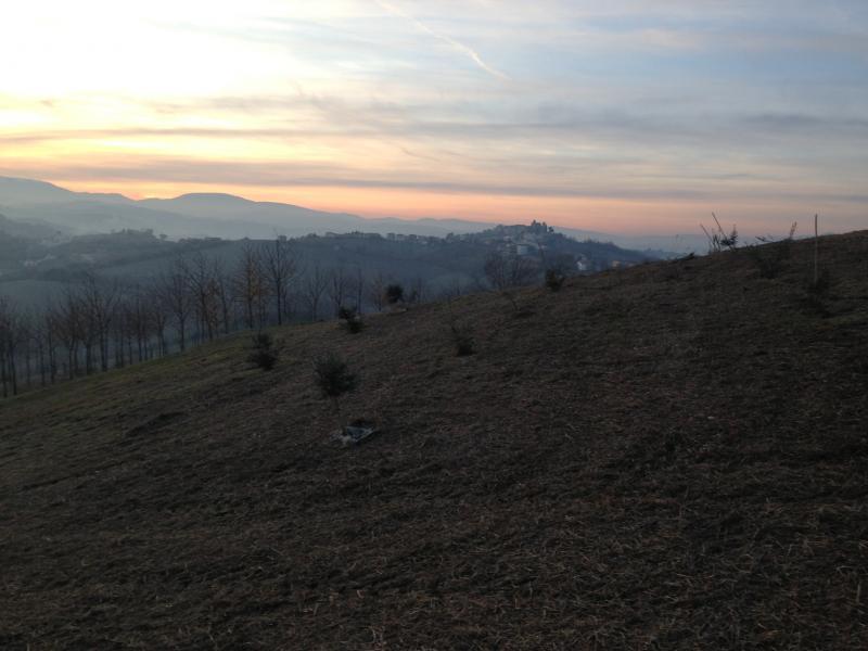 Terreno Agricolo in vendita a Montegiorgio, 9999 locali, Trattative riservate | CambioCasa.it