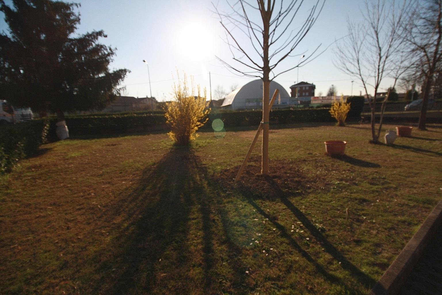 Appartamento in vendita a Castelnovo di Sotto, 3 locali, prezzo € 125.000   CambioCasa.it