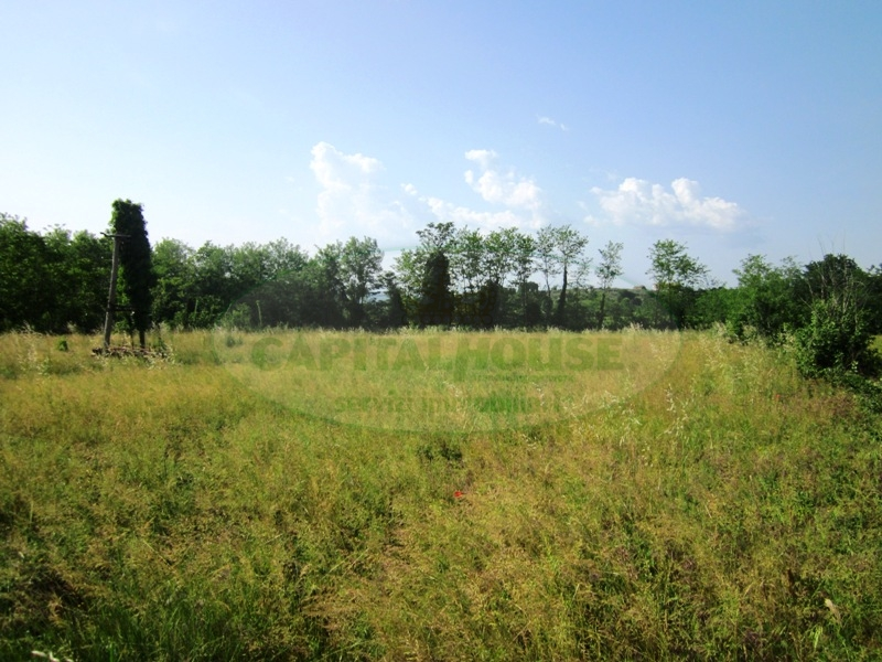 Terreno Agricolo in vendita a Sant'Agata De' Goti, 9999 locali, prezzo € 45.000 | Cambio Casa.it