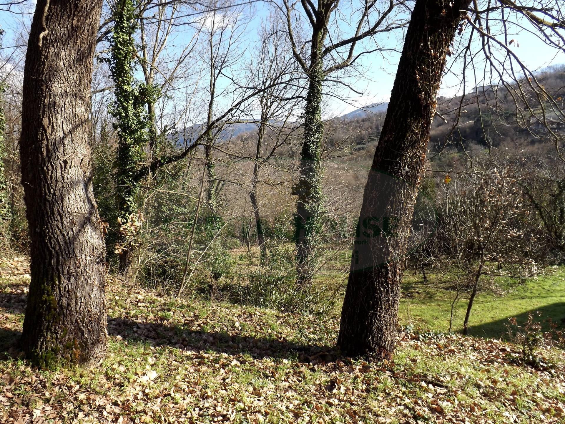 Terreno Agricolo in vendita a Aiello del Sabato, 9999 locali, prezzo € 40.000 | Cambio Casa.it