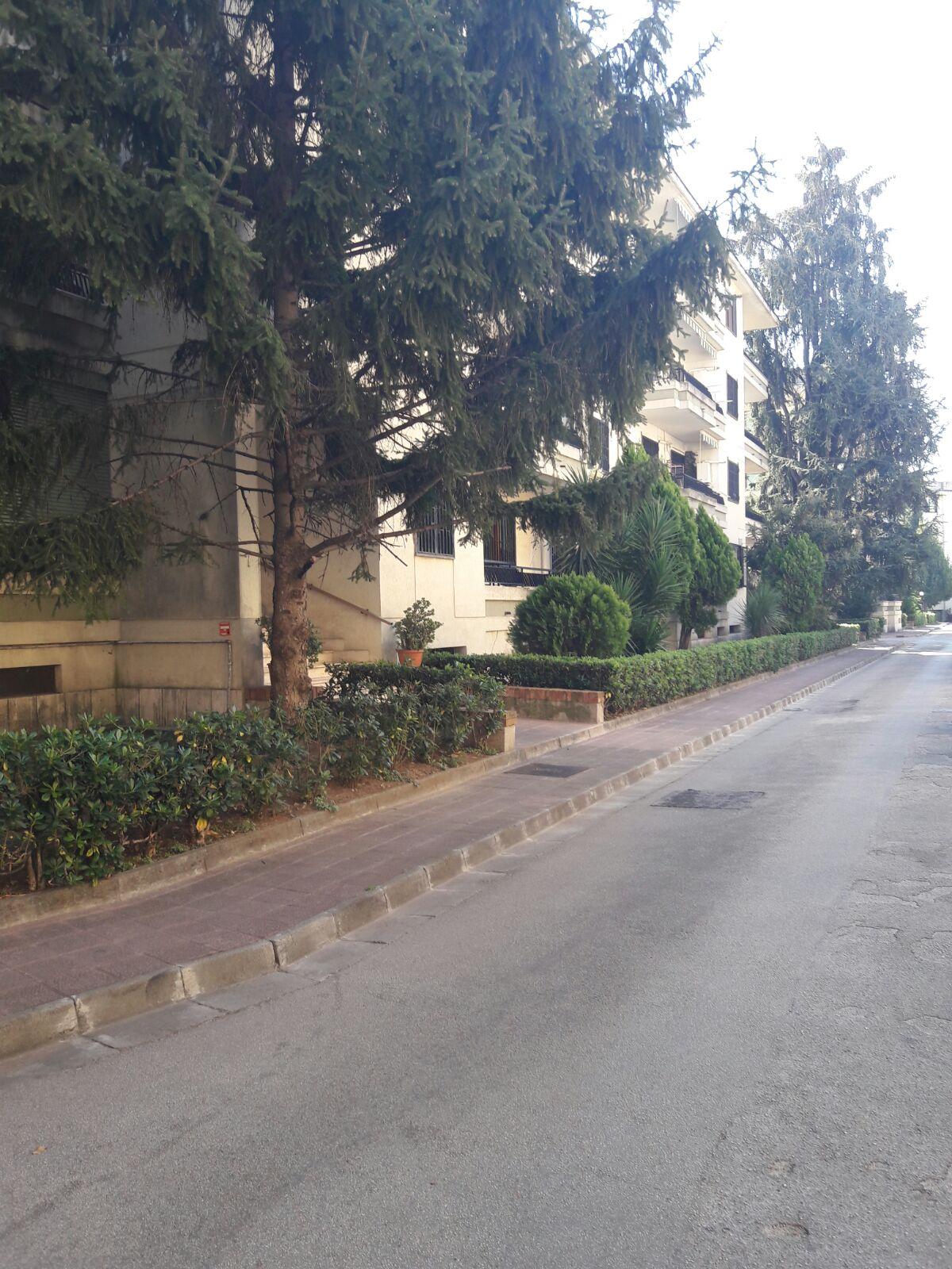 Appartamento, 180 Mq, Affitto - Caserta (Caserta)