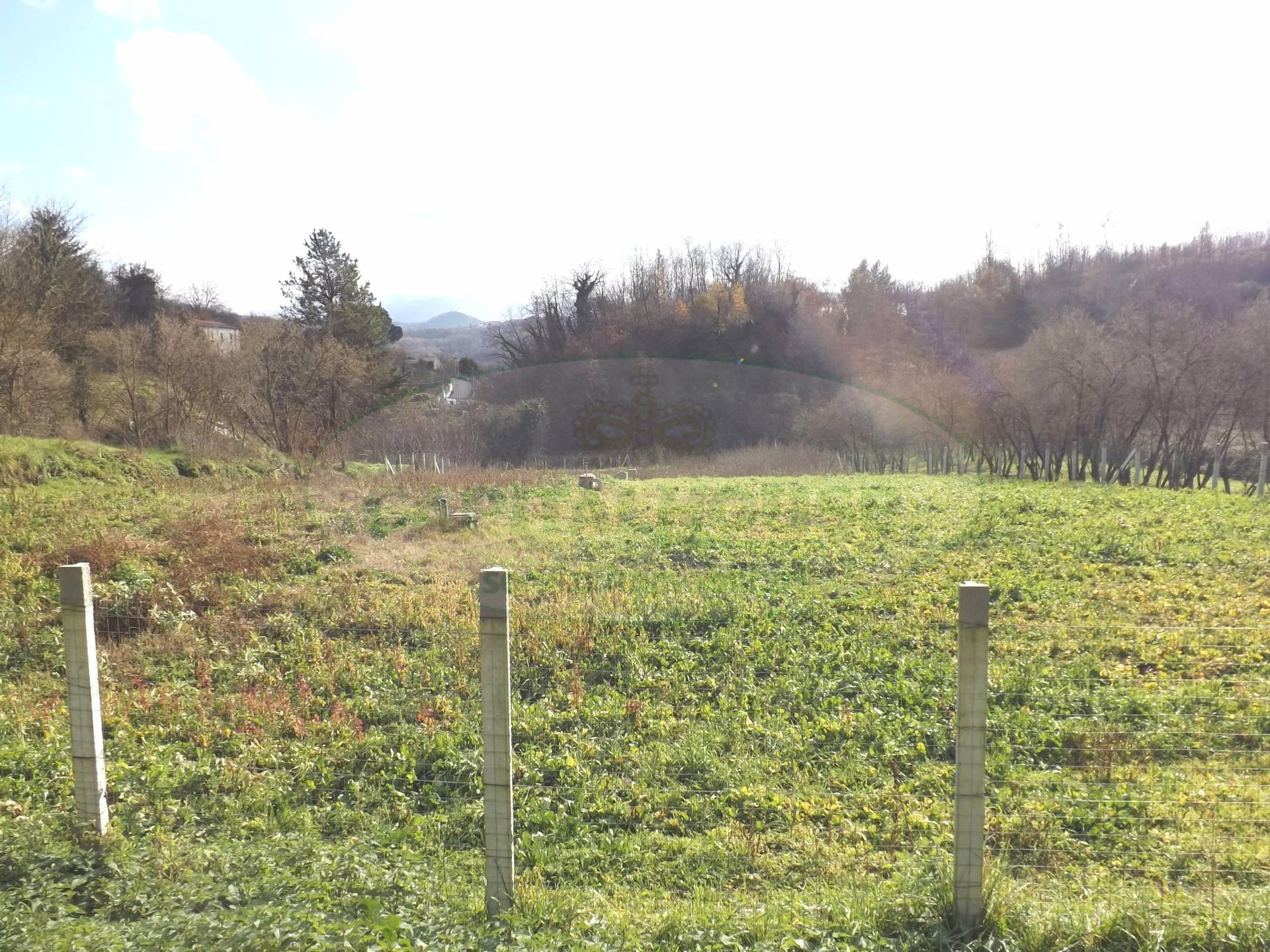 Terreno Agricolo in vendita a Prata di Principato Ultra, 9999 locali, prezzo € 30.000 | CambioCasa.it