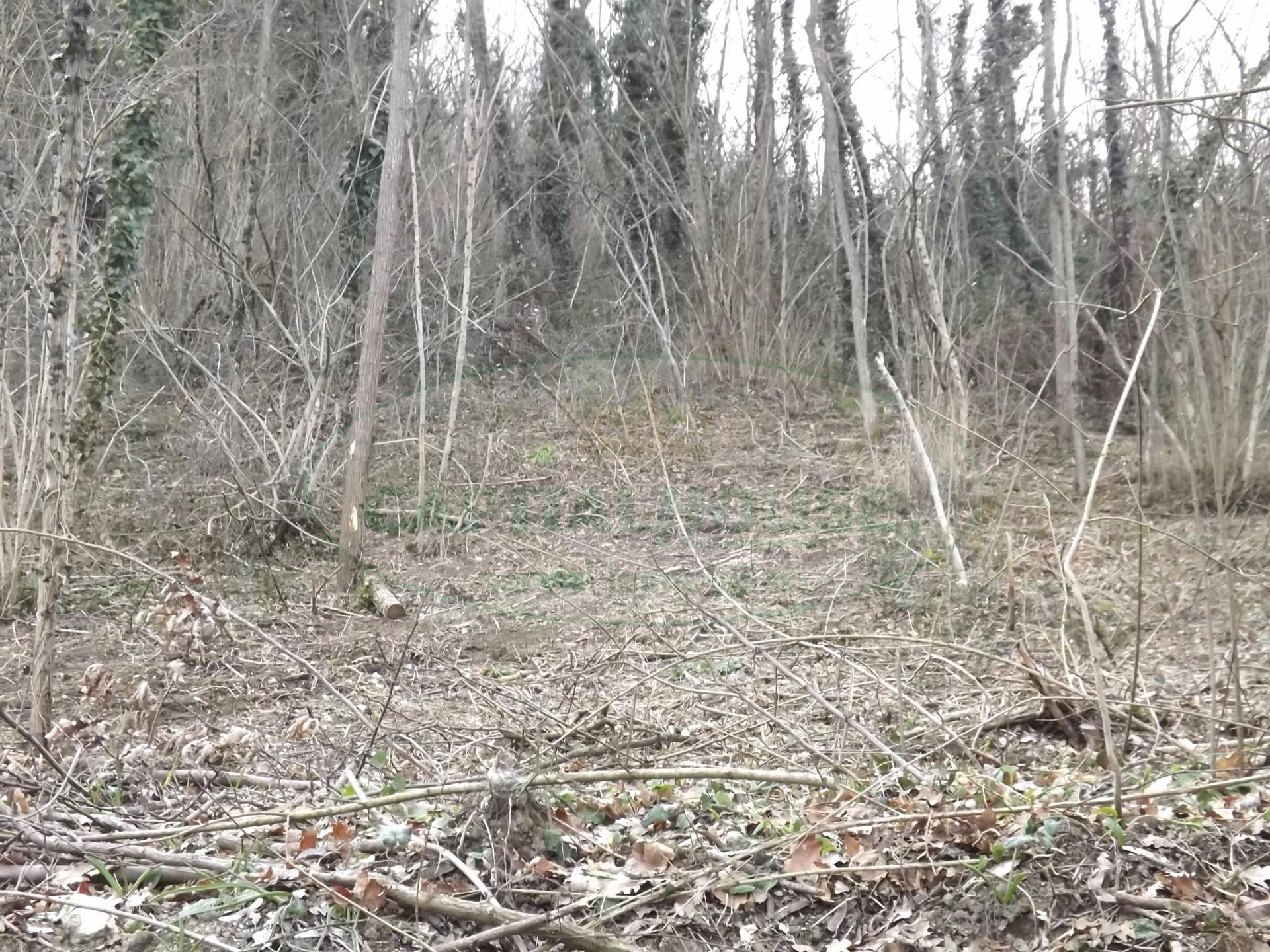Terreno Agricolo in vendita a Prata di Principato Ultra, 9999 locali, prezzo € 3.000 | CambioCasa.it