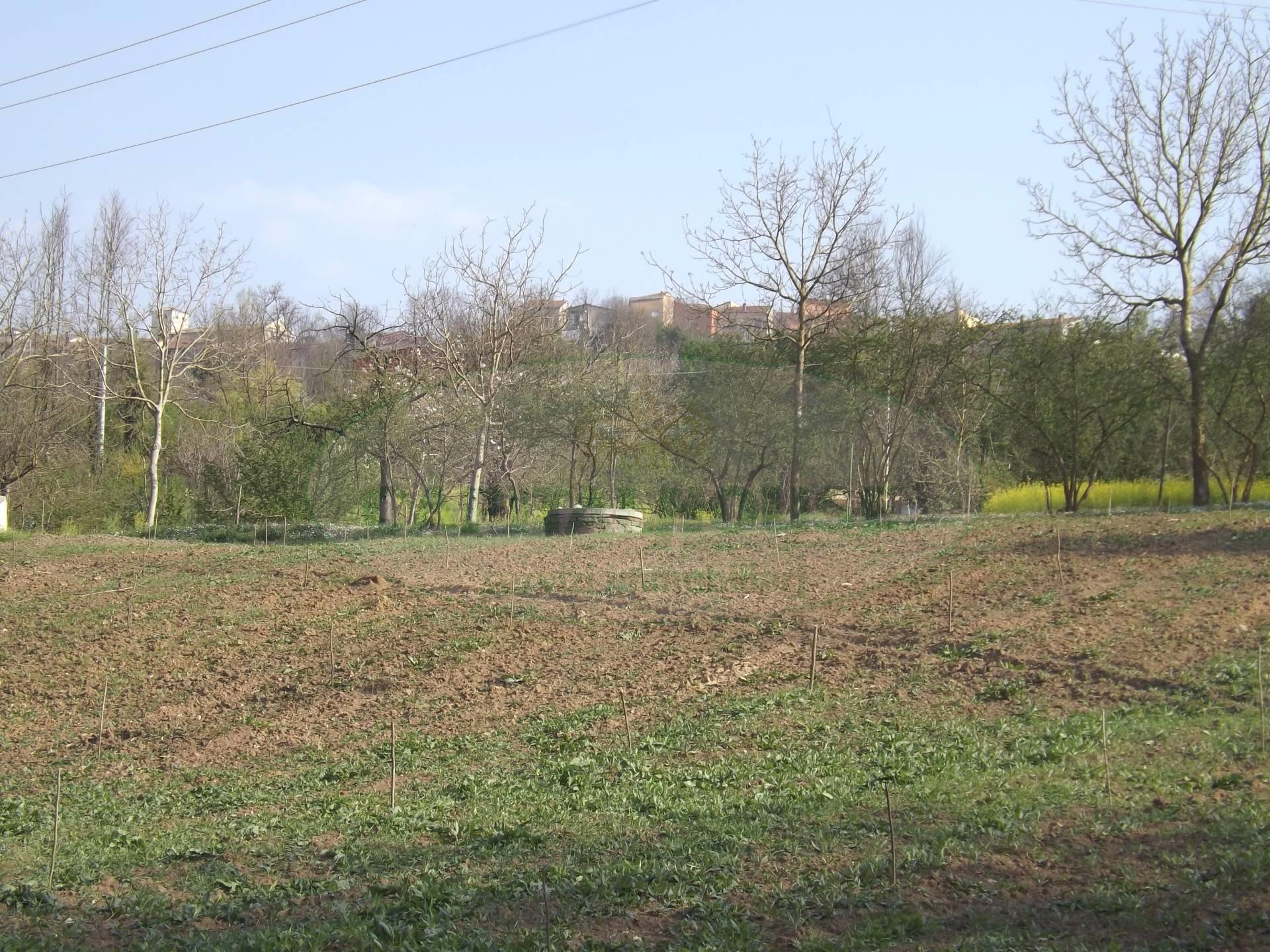 Terreno Agricolo in vendita a Manocalzati, 9999 locali, prezzo € 24.000 | CambioCasa.it