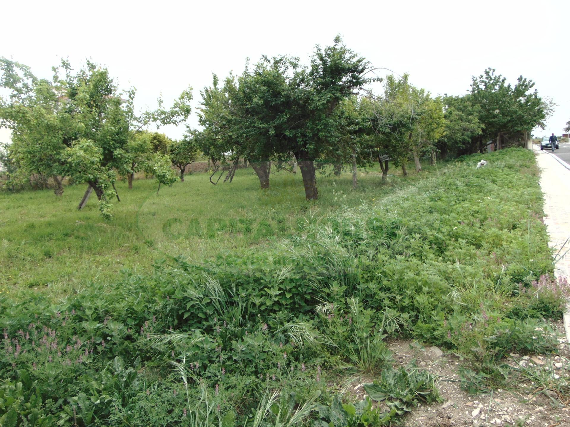 Terreno Edificabile Residenziale in vendita a San Tammaro, 9999 locali, prezzo € 95.000 | CambioCasa.it