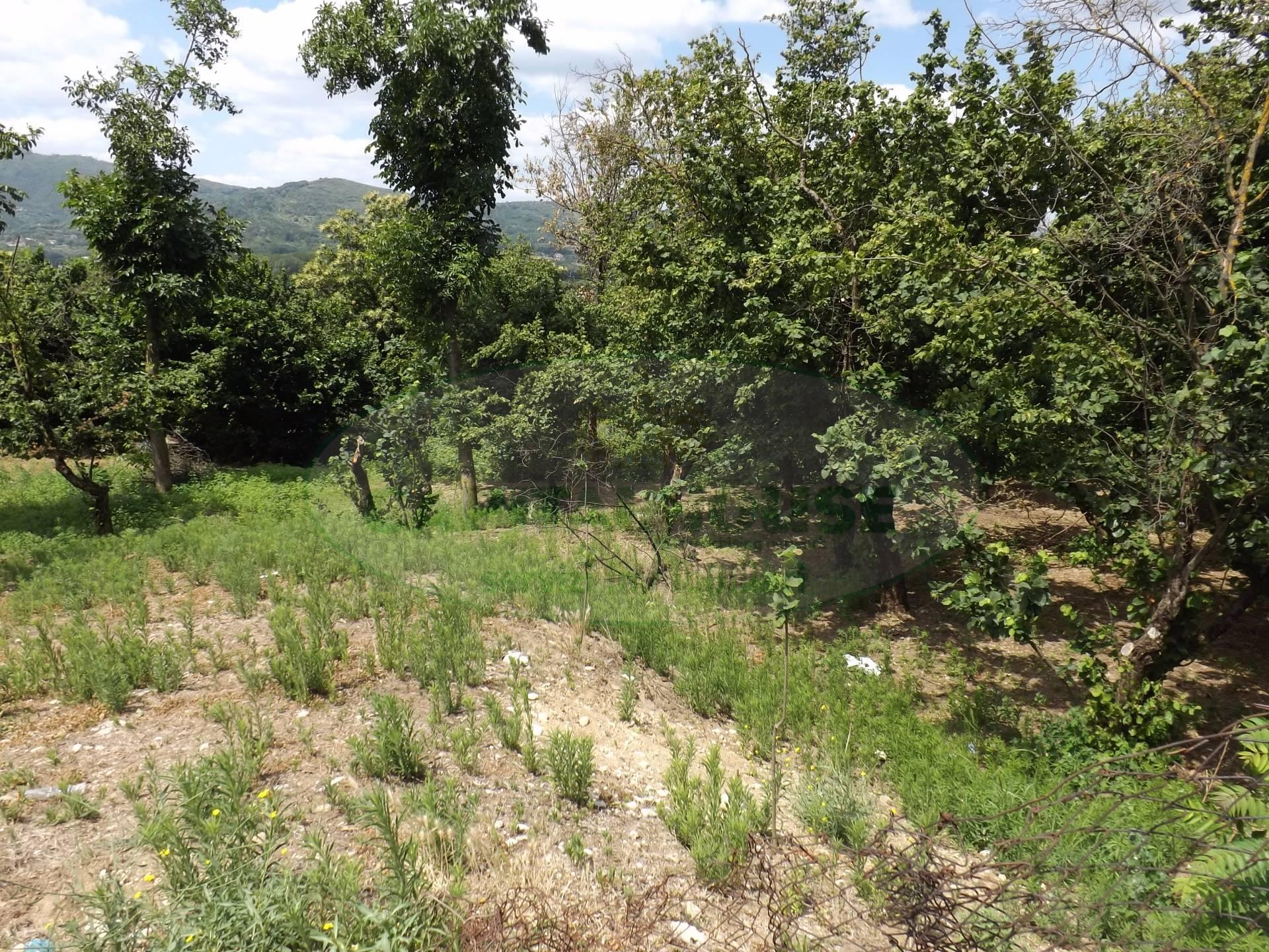 Terreno Edificabile Residenziale in vendita a Santa Lucia di Serino, 9999 locali, zona Località: SanRocco, prezzo € 160.000 | CambioCasa.it
