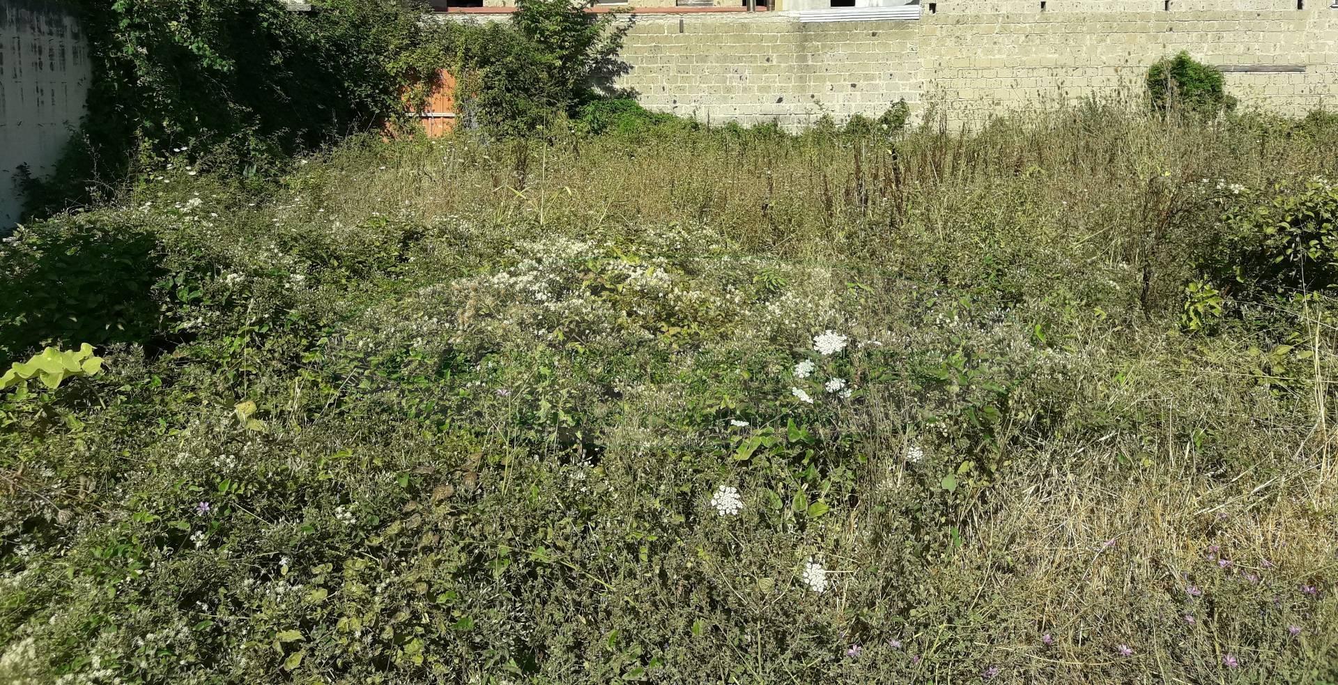 Terreno Edificabile Residenziale in vendita a Portico di Caserta, 9999 locali, prezzo € 135.000 | CambioCasa.it