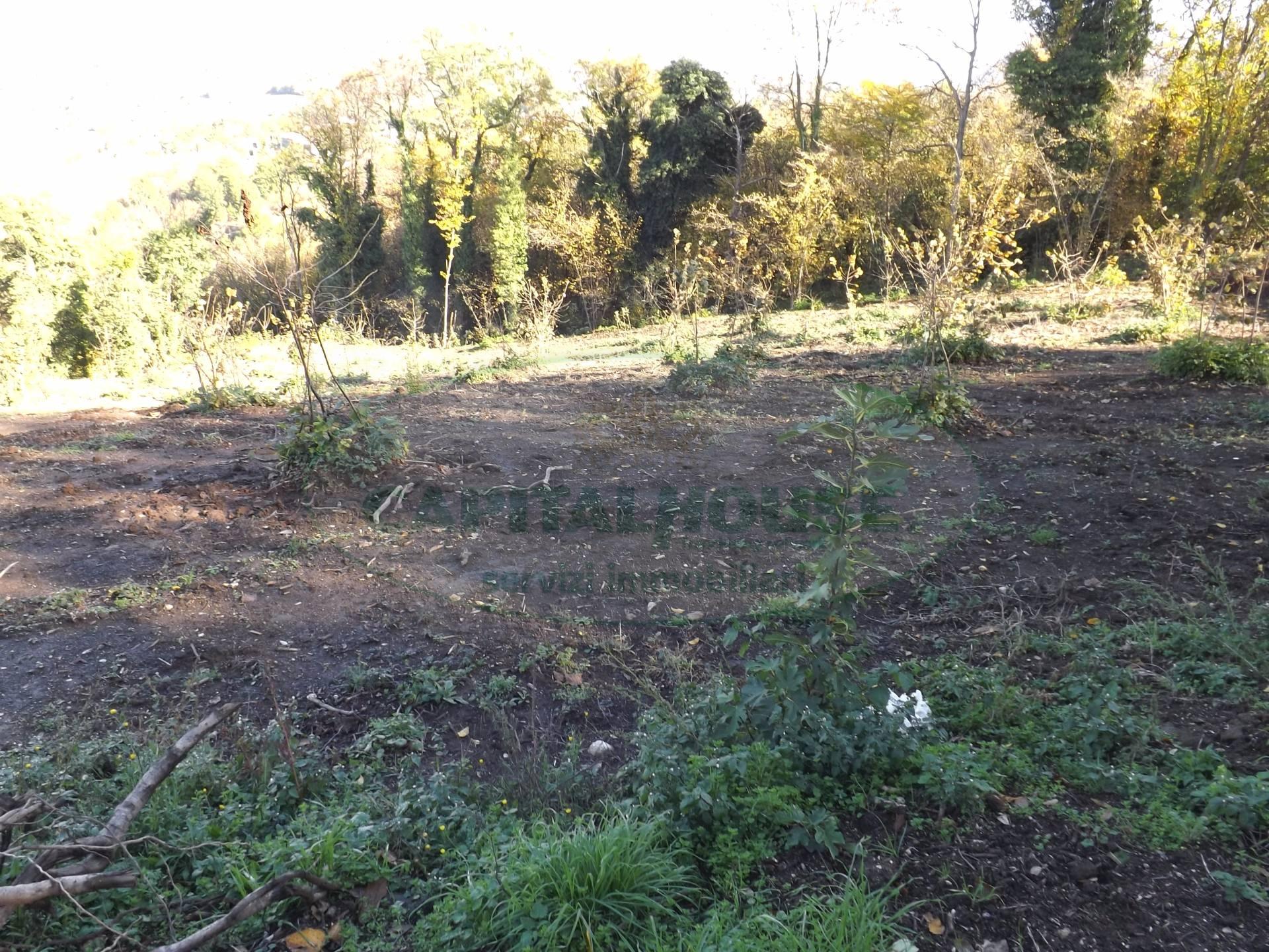 Terreno Agricolo in Vendita a Atripalda