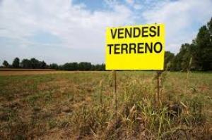Vai alla scheda: Terreno Agricolo Vendita - Macerata Campania (CE) - Rif. 58 MACERATA