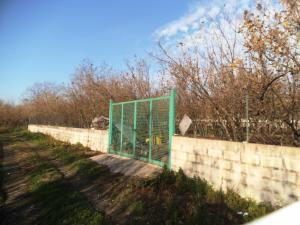 Vai alla scheda: Terreno Agricolo Vendita - Avella (AV) - Rif. 8166