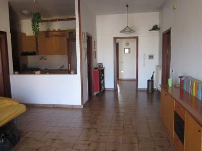 Vai alla scheda: Appartamento Affitto - San Nicola la Strada (CE) - Rif. 245v