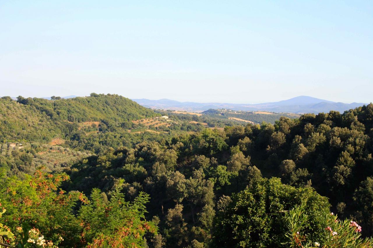 Bilocale Magliano in Toscana Pereta 9