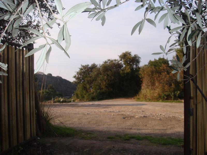 Terreno Agricolo in Vendita a Monte Argentario