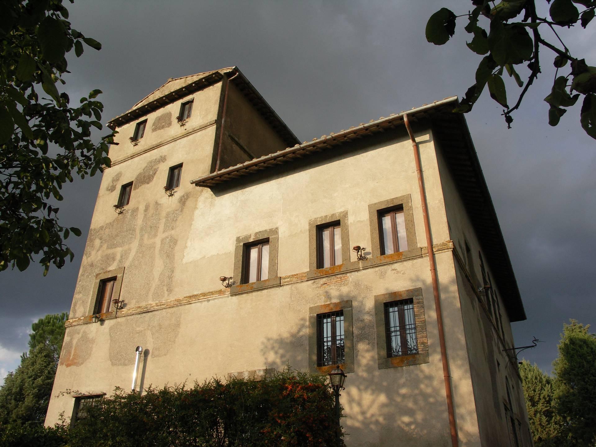 Villa in vendita a Faleria, 15 locali, prezzo € 1.300.000 | CambioCasa.it
