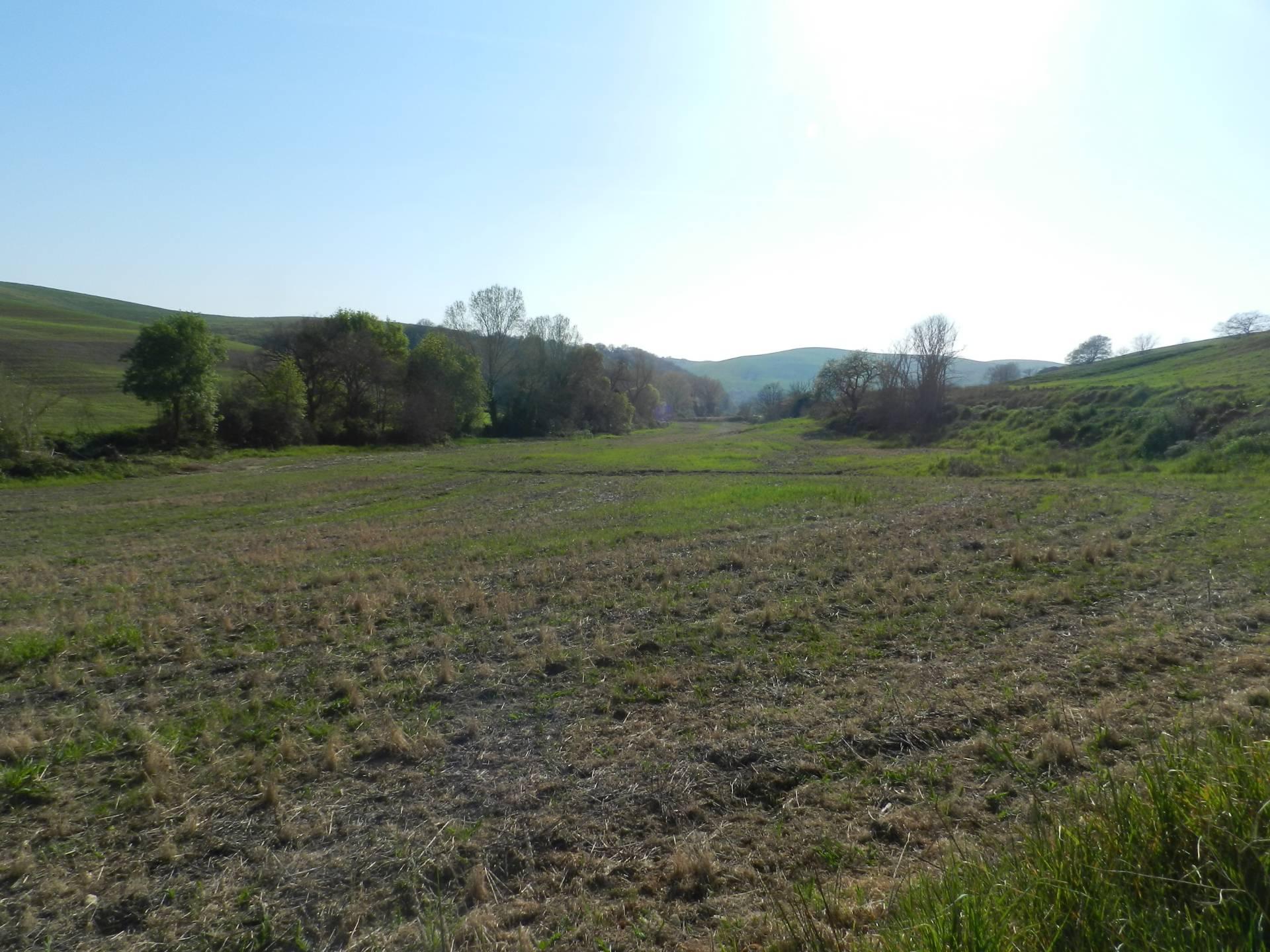 Terreno Agricolo in vendita a Tuscania, 9999 locali, prezzo € 35.000 | CambioCasa.it