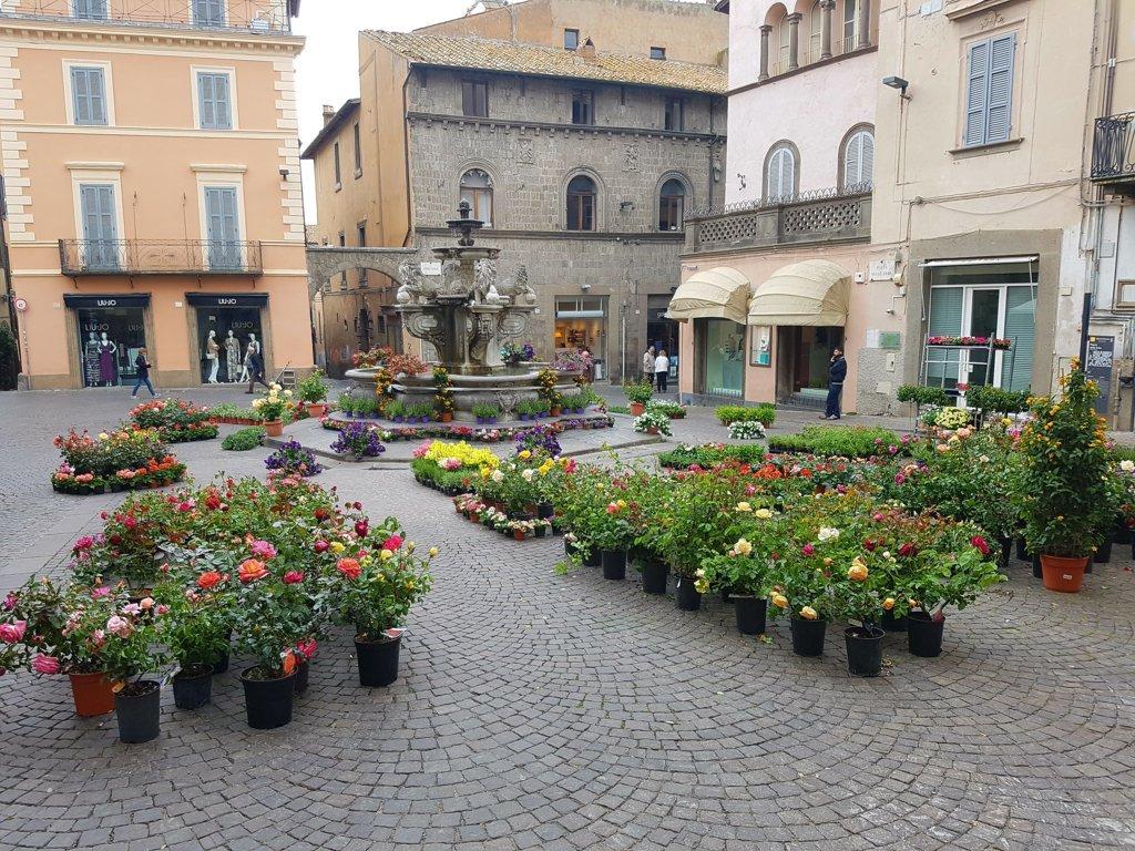 Negozio / Locale in Vendita a Viterbo