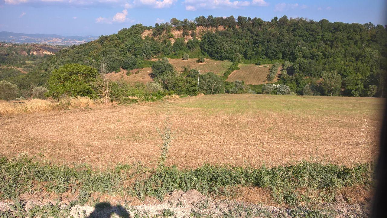 Terreno Agricolo in vendita a Celleno, 9999 locali, prezzo € 60.000 | CambioCasa.it