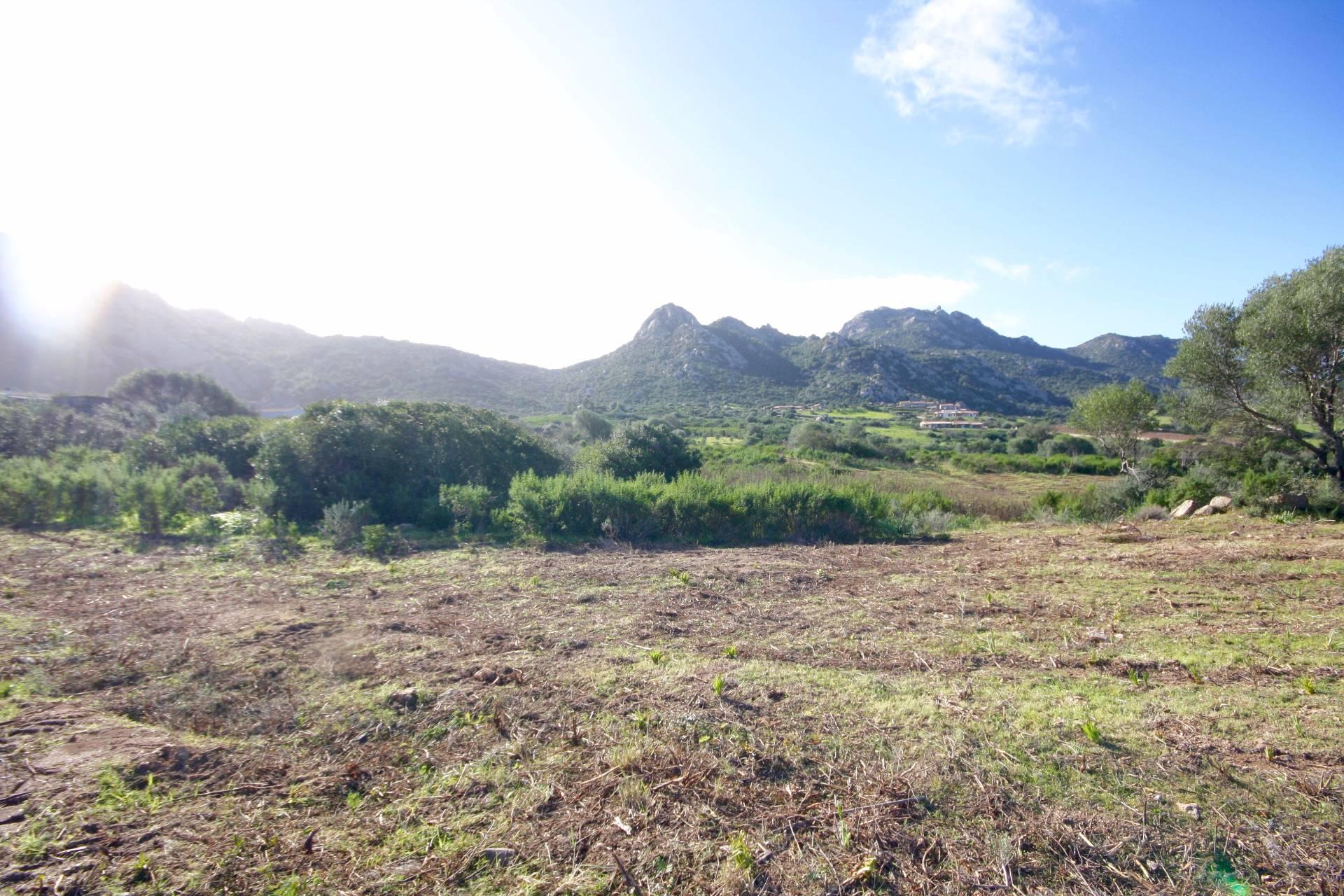 Terreno Edificabile Residenziale in vendita a Golfo Aranci, 9999 locali, prezzo € 130.000 | CambioCasa.it