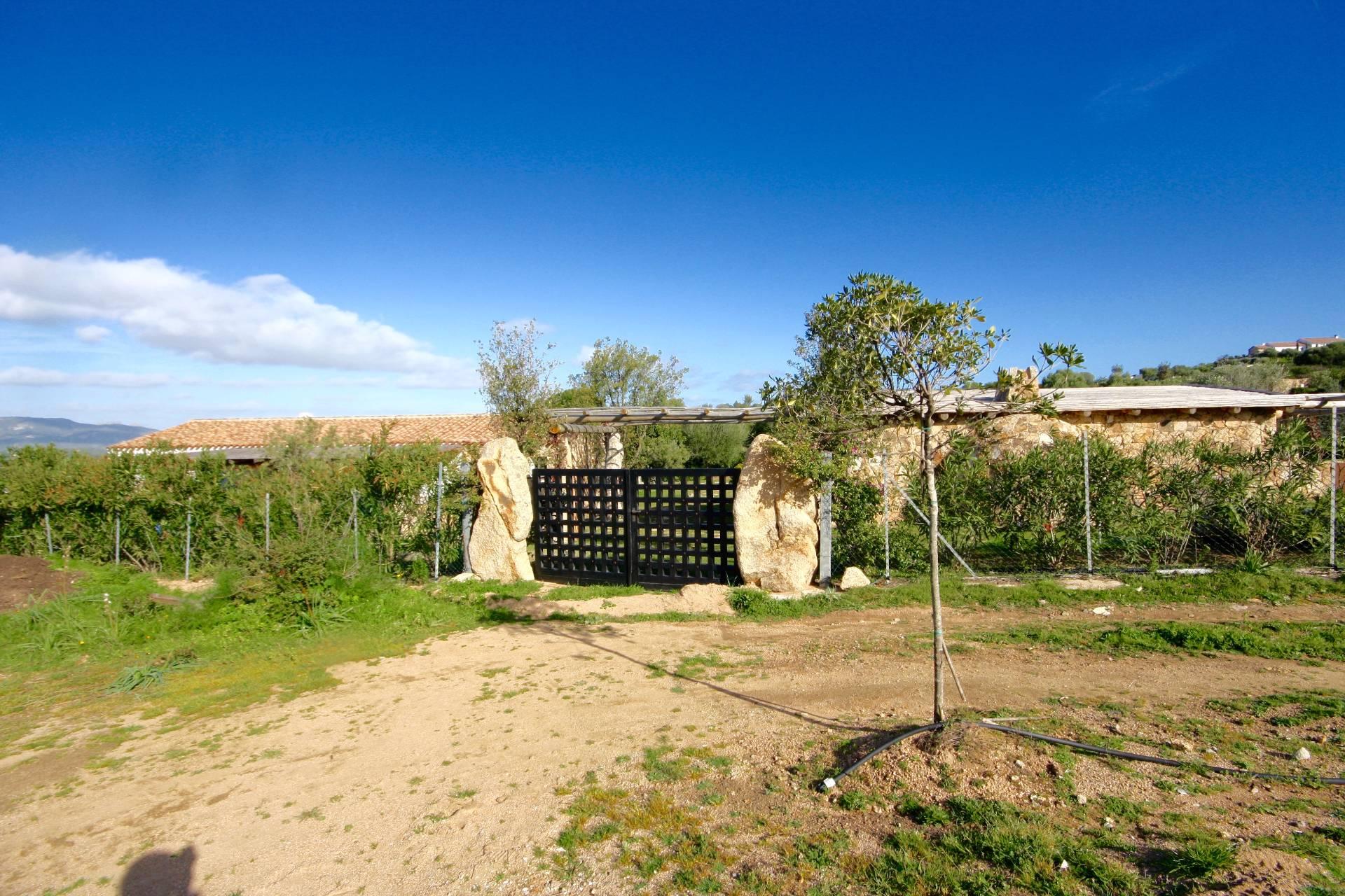 Terreno Edificabile Residenziale in Vendita a Golfo Aranci