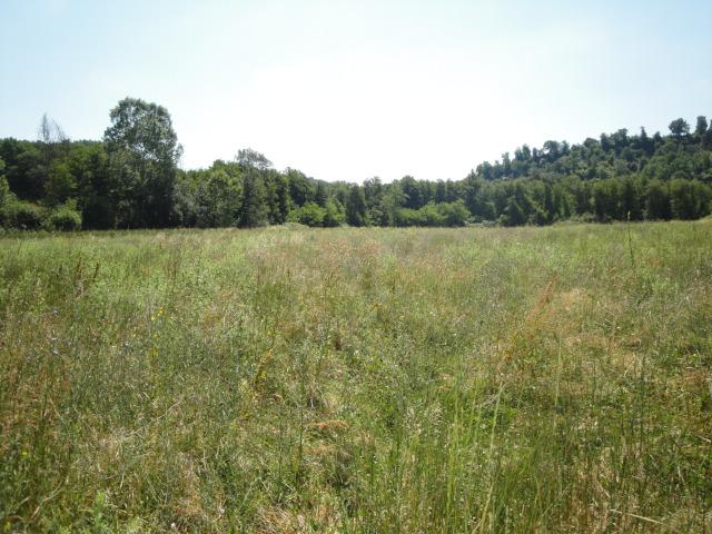 Terreno Agricolo in vendita a Viterbo, 9999 locali, Trattative riservate | CambioCasa.it