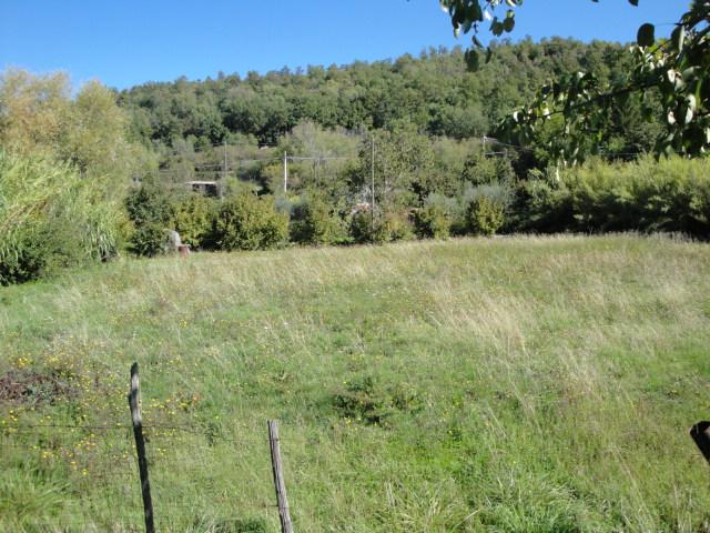 Terreno Agricolo in vendita a Viterbo, 9999 locali, zona Zona: Bagnaia, prezzo € 18.500 | CambioCasa.it