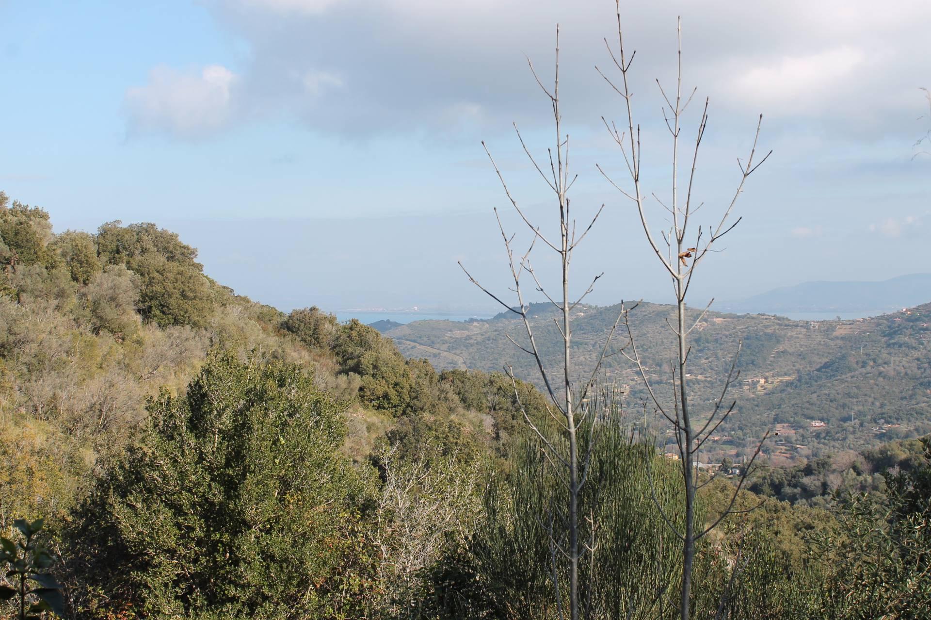 Rustico / Casale in vendita a Monte Argentario, 2 locali, zona Località: PortoS.oStefano, prezzo € 80.000 | CambioCasa.it