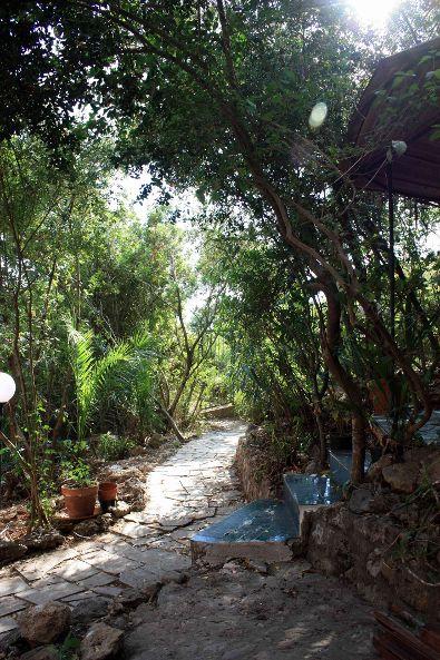 Villa in Vendita a San Felice Circeo: 5 locali, 120 mq - Foto 4