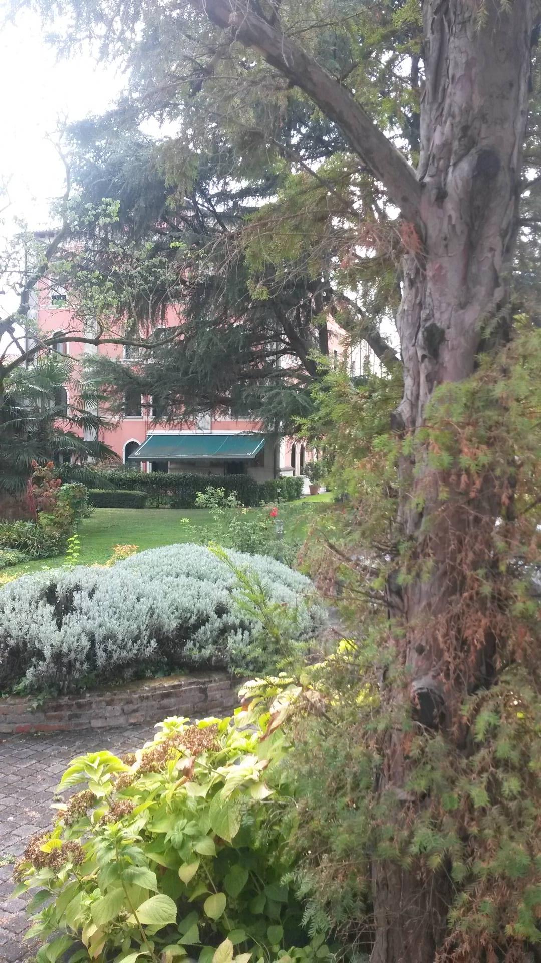 Appartamento in affitto a Treviso, 9 locali, prezzo € 1.800   CambioCasa.it