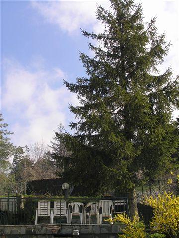 Villa in vendita a Stella, 12 locali, prezzo € 298.000 | CambioCasa.it