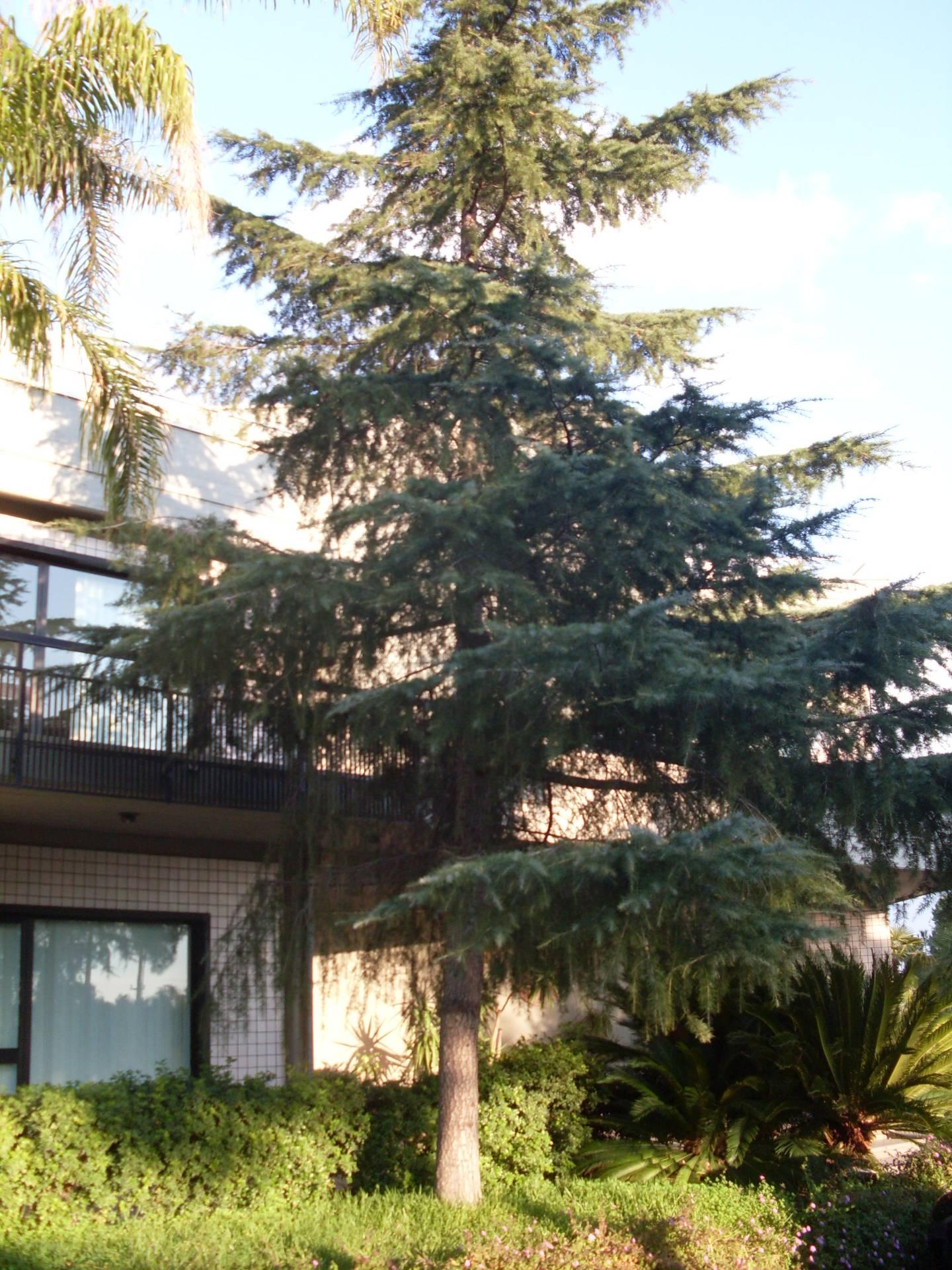 Negozio / Locale in vendita a Acireale, 9999 locali, prezzo € 2.200.000 | CambioCasa.it