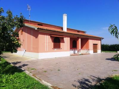 Vai alla scheda: Casa indipendente Affitto Ariano Irpino