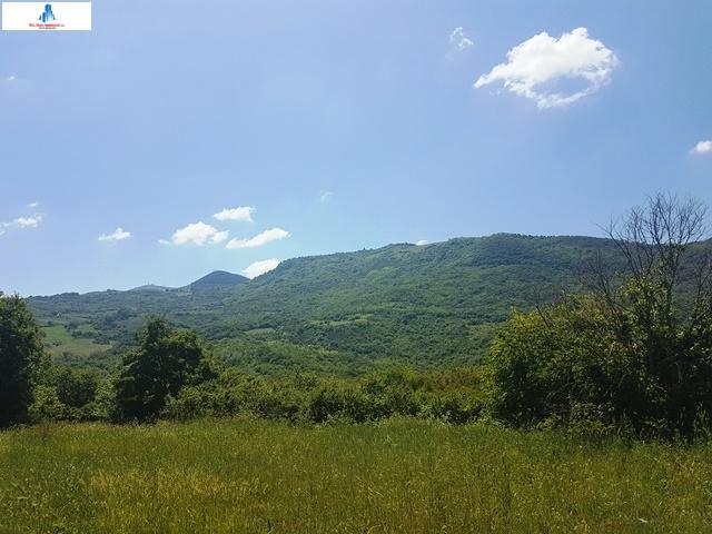 terreno agricolo in vendita a montaguto