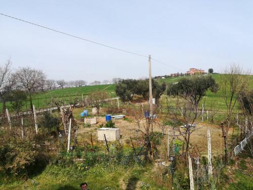 Terreno Artigianale in Vendita a Polverigi