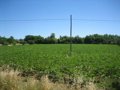 Terreno Artigianale in Vendita a Monsampolo del Tronto