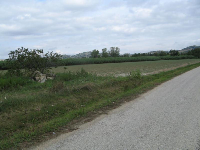 Terreno Edificabile Comm.le/Ind.le in vendita a Monsampolo del Tronto, 9999 locali, zona Località: S.P.BonificadelTronto, Trattative riservate   PortaleAgenzieImmobiliari.it