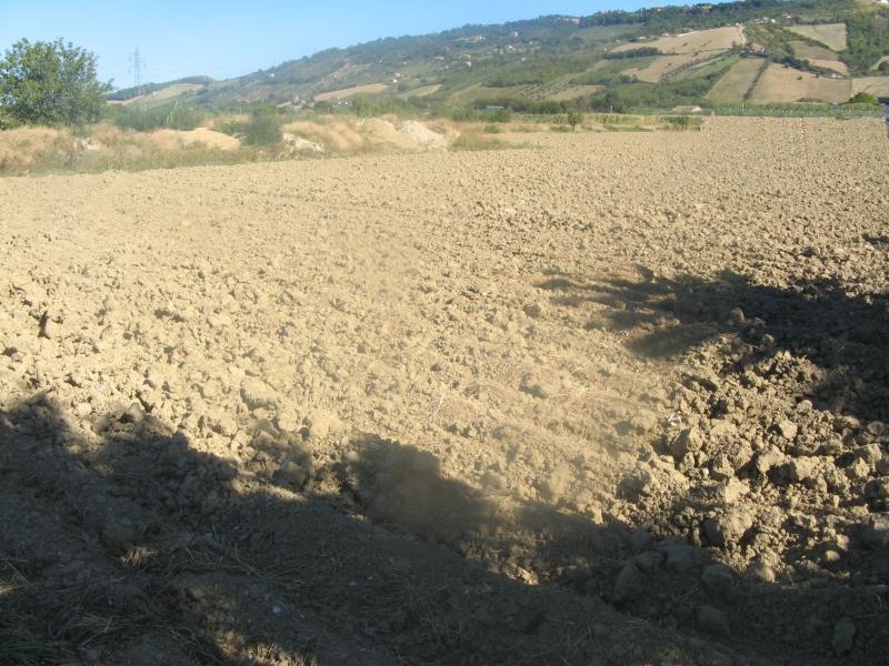 Terreno industriale in vendita a Monteprandone (AP)