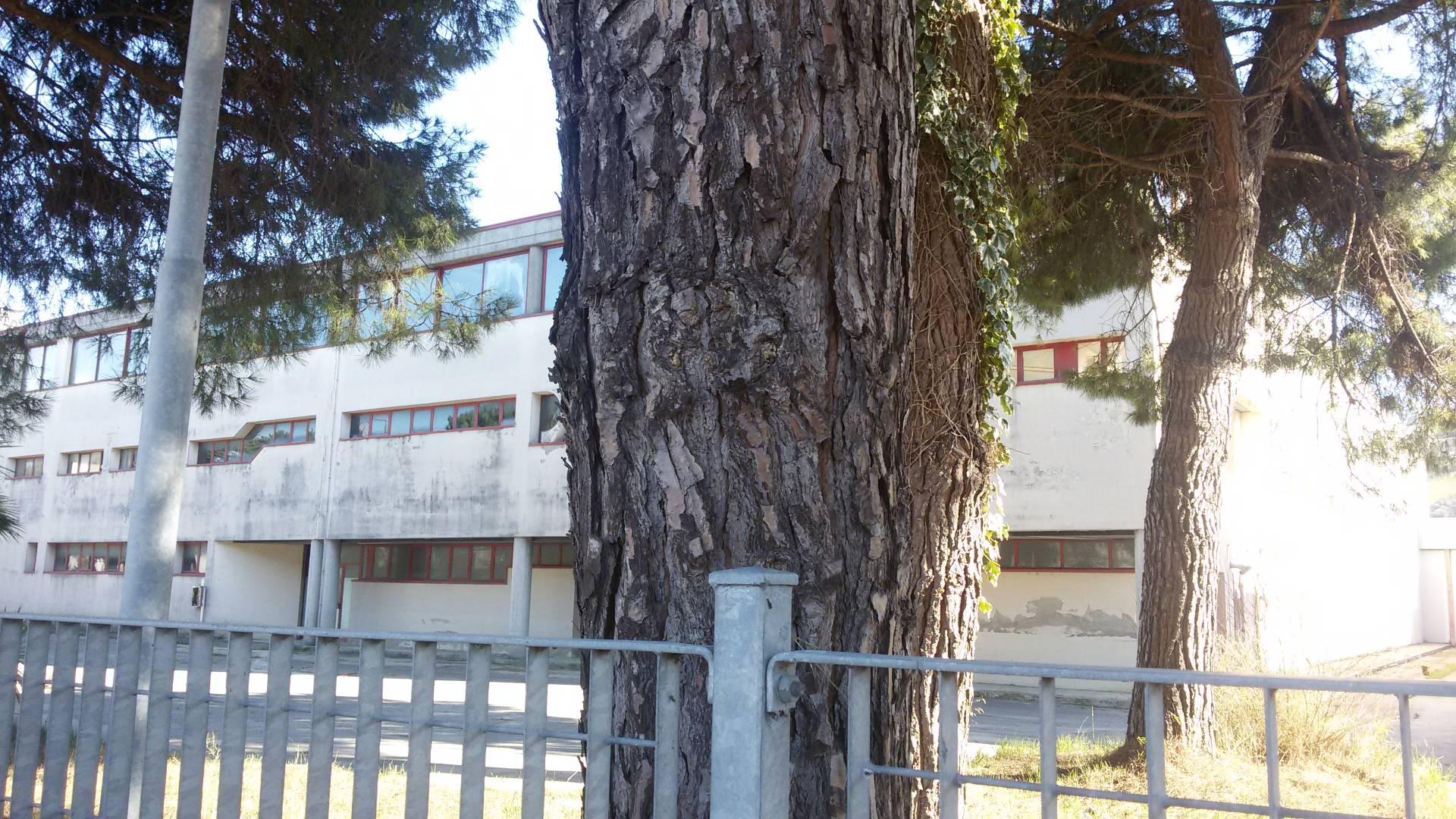 Capannone in vendita a Monteprandone, 9999 locali, zona Località: Centobuchi(sottolaSalaria, prezzo € 860.000 | Cambio Casa.it