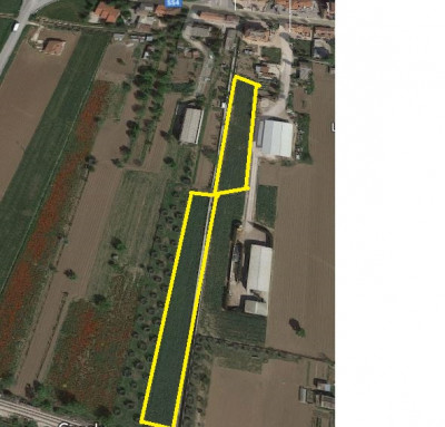 Agricultural Land in sale to Monsampolo del Tronto