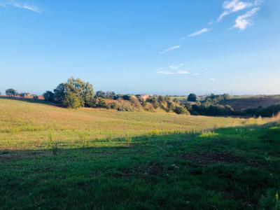 Vai alla scheda: Terreno Agricolo Vendita - Aprilia (LT)   Fossignano - Codice ITI 003-CSU40/terrf